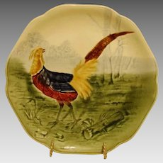 Beautiful Majolica /Faience Pottery Cabinet Plate ~ Decorated with Colorful Pheasant ~ Artist Initialed ~ H Boulenger & CO Choisy le Roi France ~ 1860-1936