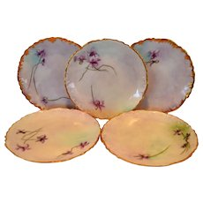 """5 Wonderful Limoges 6"""" plate set ~ Hand Painted by EMF ~ Delinieres & CO Limoges France 1894-1900"""