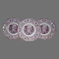 Set of 3 Cabinet Plates English Ironstone ~ Corinthia Pattern ~ Purple Transfer ~ E Challinor England ~ 1842-1867