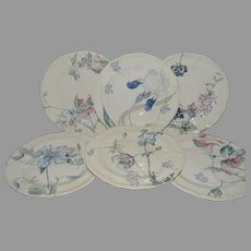 "Set of 6 Floral Plate ~ 9 3/8"" ~ French Faience Ironstone ~ Terre de Fer ~ Hautin & Boulanger Choisy le Roi France 1878 – 1920  2 Additional Sets Available."