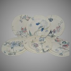 """Set of 6 Floral Plate ~ 9 3/8"""" ~ French Faience Ironstone ~ Terre de Fer ~ Hautin & Boulanger Choisy le Roi France 1878 – 1920  2 Additional Sets Available."""