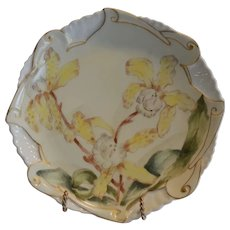 Plate Limoges Porcelain Yellow Bearded Iris by CH Limoges, Limoges France 1880-1890