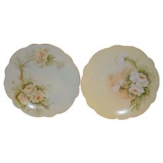 50% OFF! A Beautiful Pair of Limoges Porcelain Plates ~(2) Hand Painted with Yellow White Roses ~ Artist Signed ~ Limoges France ca after 1891