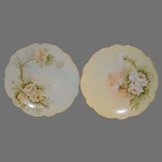 A Beautiful Pair of Limoges Porcelain Plates ~(2) Hand Painted with Yellow White Roses ~ Artist Signed ~ Limoges France ca after 1891
