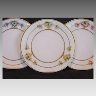 Three Gorgeous Bavarian Porcelain Plates Hand Painted with Three Different Types of Grapes ~ Artist Signed ~ Favorite Bavaria 1900+