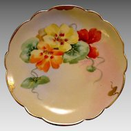 Exquisite ~ Porcelain Plate by the Pickard Studio Hand Painted with Nasturtiums by Florence James ~ 1905-1910