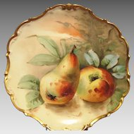 "Wonderful Limoges Porcelain Cabinet Plate ~ Hand Painted with Golden Ripe Pears ~ Gold Rococo Rim~ Artist ""MAX"" Signed ~ Limoges France / Flambeau China 1890 - 1900"