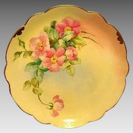 "Amazing Bavarian Porcelain Cabinet Plate ~ Hand Painted by Pickard Artist  "" Florence James "" with Pink Roses ~ Rosenthal Bavaria/ Pickard 1905-1910"