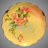 """Amazing Bavarian Porcelain Cabinet Plate ~ Hand Painted by Pickard Artist  """" Florence James """" with Pink Roses ~ Rosenthal Bavaria/ Pickard 1905-1910"""