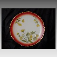 50% OFF! Wonderful Limoges Porcelain Cabinet Plate ~ Rust Rim with Yellow Poppies – T&V (Tressemann & Vogt) 1892-1906