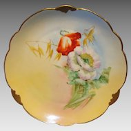 "Wonderful Bavarian Porcelain Cabinet Plate ~ Hand Painted by Pickard Artist  "" Florence James "" with Poppies ~ Rosenthal Bavaria/ Pickard 1905-1910"