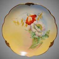"""Wonderful Bavarian Porcelain Cabinet Plate ~ Hand Painted by Pickard Artist  """" Florence James """" with Poppies ~ Rosenthal Bavaria/ Pickard 1905-1910"""