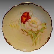 "Wonderful Bavarian Porcelain Cabinet Plate ~ Hand Painted by Pickard Artist  "" George Leach "" with Poppies ~ Rosenthal Bavaria/ Pickard 1905-1910"