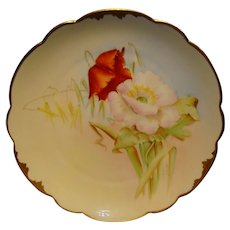 """Wonderful Bavarian Porcelain Cabinet Plate ~ Hand Painted by Pickard Artist  """" George Leach """" with Poppies ~ Rosenthal Bavaria/ Pickard 1905-1910"""