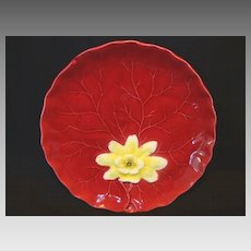 "Colorful German Majolica Red ""Water Lily"" Cabinet Plate ~ ZELL United Ceramic Factories - GEORG SCHMIDER (Germany) - ca 1907 – 1928"