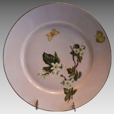 50% OFF! AMAZING Pink Limoges Porcelain Plate with White Flowers and Butterflies (Meadow Visitor Pattern) – Artist Signed A. Hening - Haviland Co. 1886