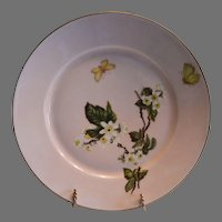 AMAZING Pink Limoges Porcelain Plate with White Flowers and Butterflies (Meadow Visitor Pattern) – Artist Signed A. Hening - Haviland Co. 1886