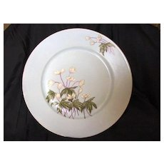 Beautiful Blue Limoges Porcelain Cabinet Plate, Hand Painted with May Apple like Flowers -  Artist Signed – Haviland & Co France ca.1875-1882