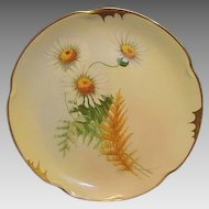 "Gorgeous Bavarian Porcelain Plate ~ Pickard Studio with Yellow Centered White Daisies ~ Artist Signed "" Wight "" ~ Jaegers & Co Bavaria / Pickard Studios Chicago IL 1906 - 1910"