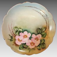 """50% OFF! Exceptional Bavarian Porcelain Cabinet Plate ~ Hand Painted with Wild Pink Roses ~ Artist """" Lebovitz """"Signed ~ Bavaria 1910"""