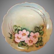 """Exceptional Bavarian Porcelain Cabinet Plate ~ Hand Painted with Wild Pink Roses ~ Artist """" Lebovitz """"Signed ~ Bavaria 1910"""