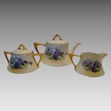 Wonderful Bavarian Tea Set Teapot, Creamer, Sugar and 3 cups / saucers ~ Hand painted with Purple Violets ~ Zeh Scherzer &; Co Bavaria 1880-1918