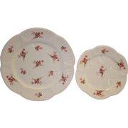 "Shelley Bone China 8"" & 6"" Plates ~ Rose Spray / Bridal Rose Pattern 13545~ Dainty Shape ~ Shelley England 1940-1966"