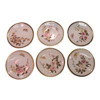 Six Royal Worcester Aesthetic Design Plates ca. 1880