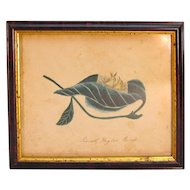 Nineteenth Century Watercolor of Birds in Leaf
