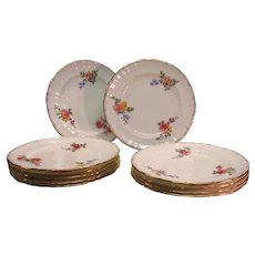 Set 10 Minton plates for Collamore, Davis. Co ca. 1890