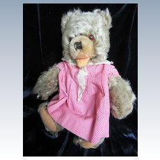 Steiff Zotty Bear wearing old Dress