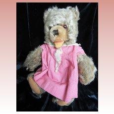 Steiff Zotty Bear wearing old Dress