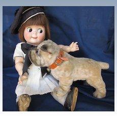 Antique Doll's Early Medium Bulldog by Steiff