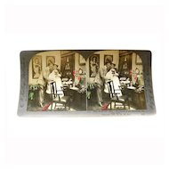 "Stereo View Card ALBUMEN Tinted 1903 E W Kelley Rau ""The Stork's Visit"""