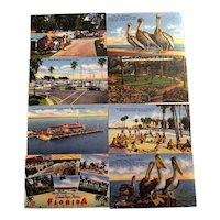 8 Photochrome UNUSED Postcards Webb's Drugstore and Tichnor Bros. Southern Florida Scenes