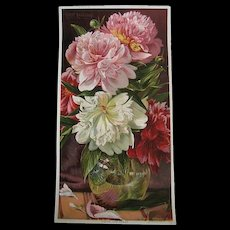 c1895 Antique Victorian Peonies Print Roseland Peony  Flower Chromolithograph Half Yard Long