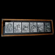 c1880 Bird Yard Long Print s Giacomelli Engraving Nest Eggs Chicks Antique