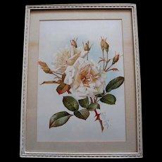 Antique White Bride Roses Print Paul de Longpre Original Frame Old Glass Victorian