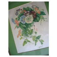 Paul de Longpre Morning Glories Print Vintage