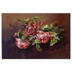 c1890s Catherine Klein Roses Print Chromolithograph C Klein Antique Victorian