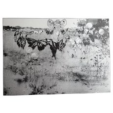 c1889 Fairy Butterfly Print Engraving The Fairy Ring Antique Victorian
