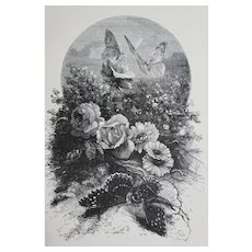 c1889 Roses and Butterflies Print Engraving Antique Victorian