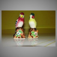 Colorful Birds Salt and Pepper Shakers - b57
