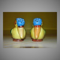 Blue Headed Toucans Salt and Pepper Shakers