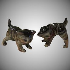 Striped Cats Salt and Pepper Shakers - b238