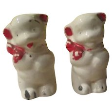 Mtstery Animal Salt and Pepper shakers - b244