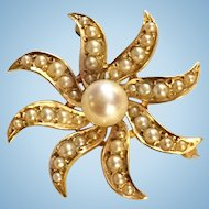 Starburst Pin Brooch 14K Yellow Gold Pearl 5.6 grams