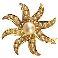 Starburst Pin Brooch 14K Yellow Gold Pearl 5.6 grams
