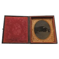 Tintype of Lying Down Dog Cased Sixth Plate
