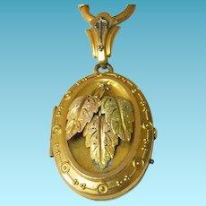 Victorian GF Bookchain Necklace & Locket